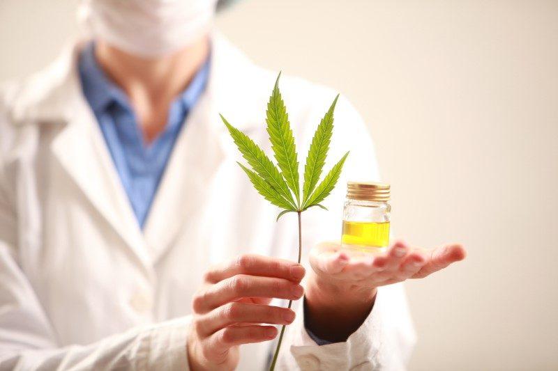 101757290-Olegmalyshev-Dreamstime-INP-Instituut-voor-Neuropathische-Pijn dvn cannabis