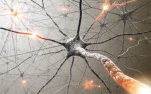 10318767-Kts-Dreamstime-INP-Instituut-voor-Neuropathische-Pijn wat is neuropathie