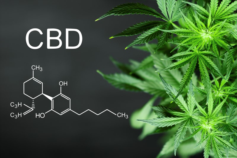 113339158-Dmitry-Tishchenko-Dreamstime-INP-Instituut-voor-Neuropathische-Pijn cannabis neuropathische pijn