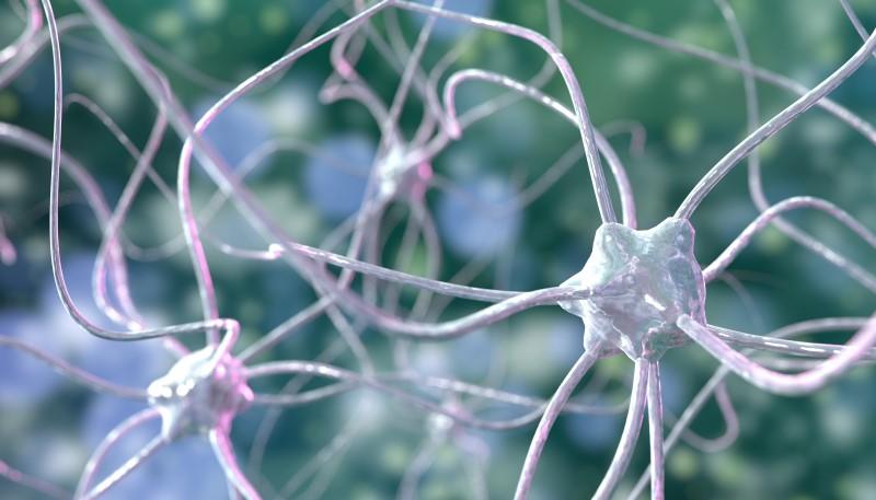 114733280-Stanislav-Rykunov-Dreamstime-INP-Instituut-voor-Neuropathische-Pijn mmn