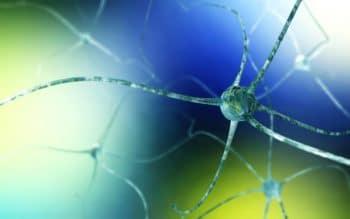 116904682-Stanislav-Rykunov-Dreamstime-INP Dunne Vezel Neuropathie Fibromyalgie