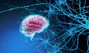 118776234-Anton-Chervov-Dreamstime-INP-Instituut-voor-Neuropathische-Pijn ms friedreich
