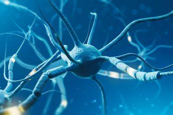 126972472-Denisismagilov-Dreamstime-INP-Instituut-voor-Neuropathische-Pijn ciap metabool syndroom Allopurinol