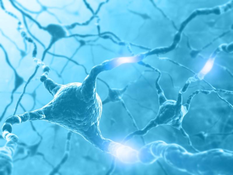 13208217-Kts-Dreamstime-INP-Instituut-voor-Neuropathische-Pijn neuropathie axonaal