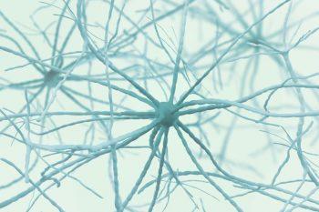136686190-Siarhei-Yurchanka-Dreamstime-INP Dunne Vezel Neuropathie oorzaken pijn