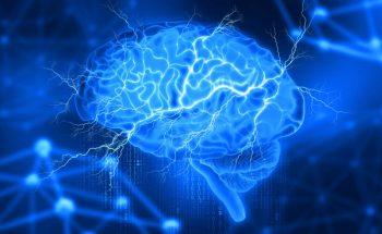140965026-Siarhei-Yurchanka-Dreamstime-INP-Instituut-voor-Neuropathische-Pijn diaschisis