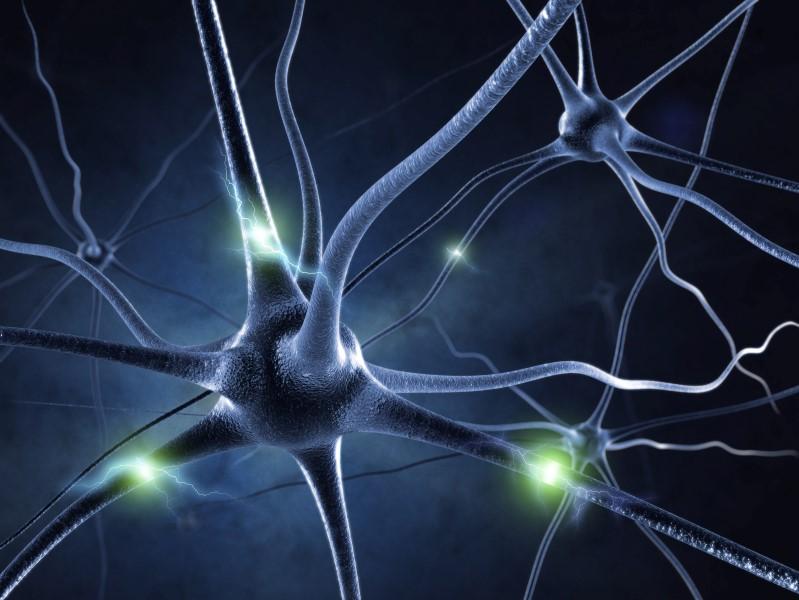 15978606-Sashkinw-Dreamstime-INP-Instituut-voor-Neuropathische-Pijn dunne vezel neuropathie dvn