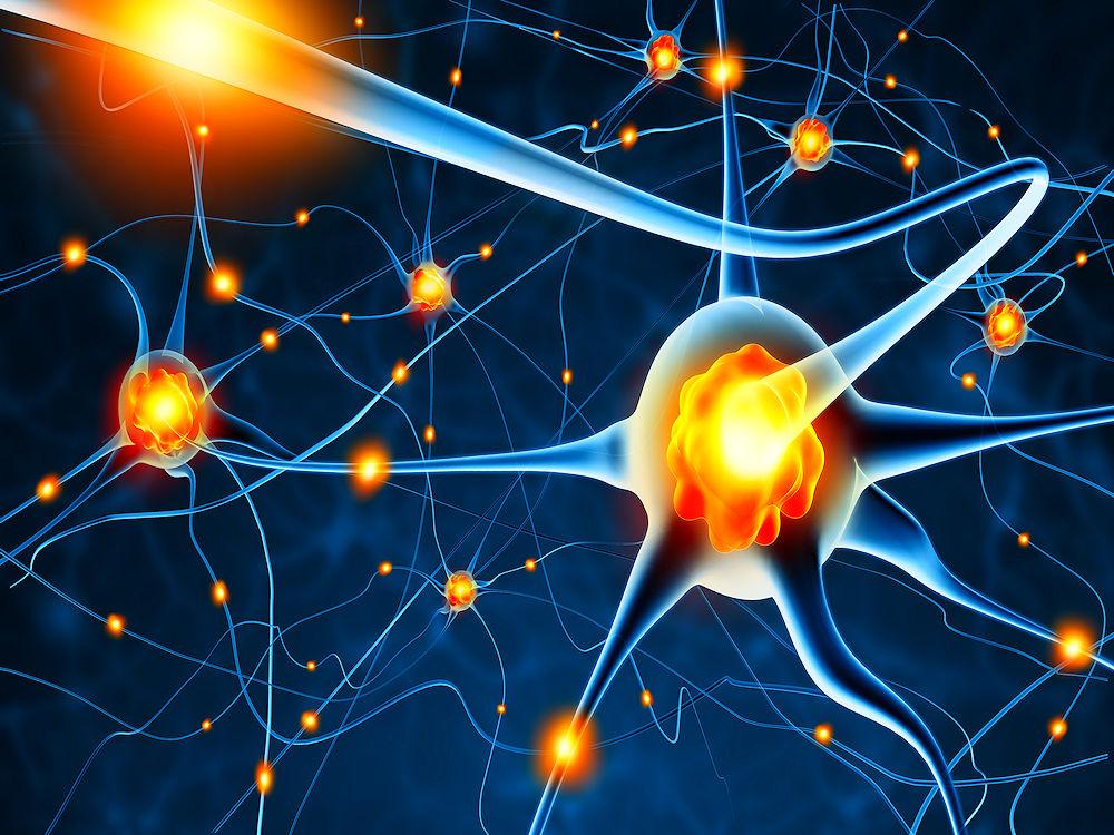 28440601-Cornelius20-Dreamstime-INP-Instituut-voor-Neuropathische-Pijn