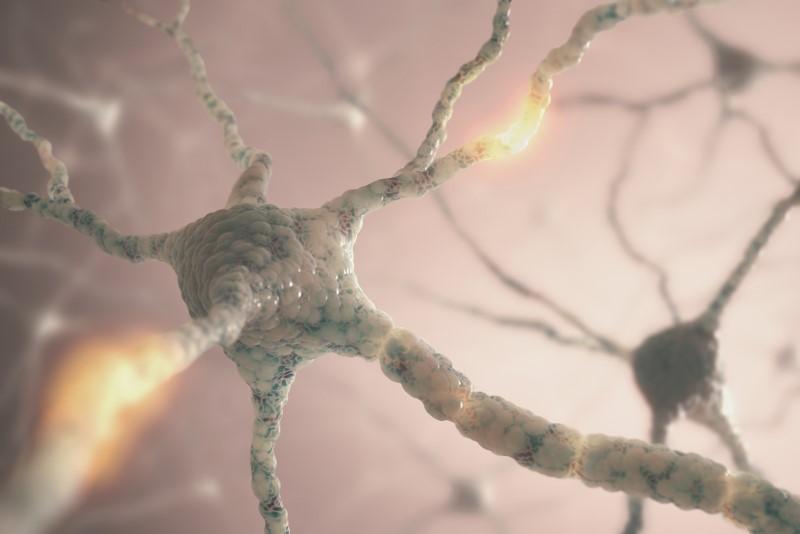 38562610-Kts-Dreamstime-INP-Instituut-voor-Neuropathische-Pijn mgus neuropathie