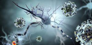 50857843-Ralwel-Dreamstime-INP-Instituut-voor-Neuropathische-Pijn bortezomib ployneuropathie