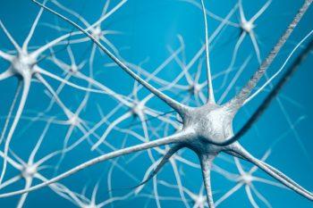67084617-Vchalup-Dreamstime-INP-Instituut-voor-Neuropathische-Pijn oorzaken soorten neuropathie