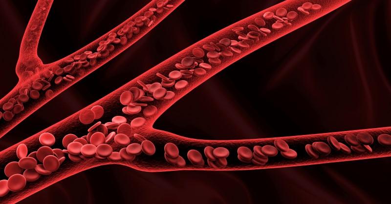 88889585-Victor-Josan-Dreamstime-INP-Instituut-voor-Neuropathische-Pijn vasculaire erodontheel