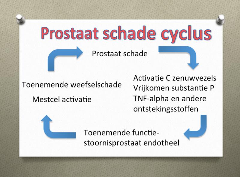 prostaatpijn pea