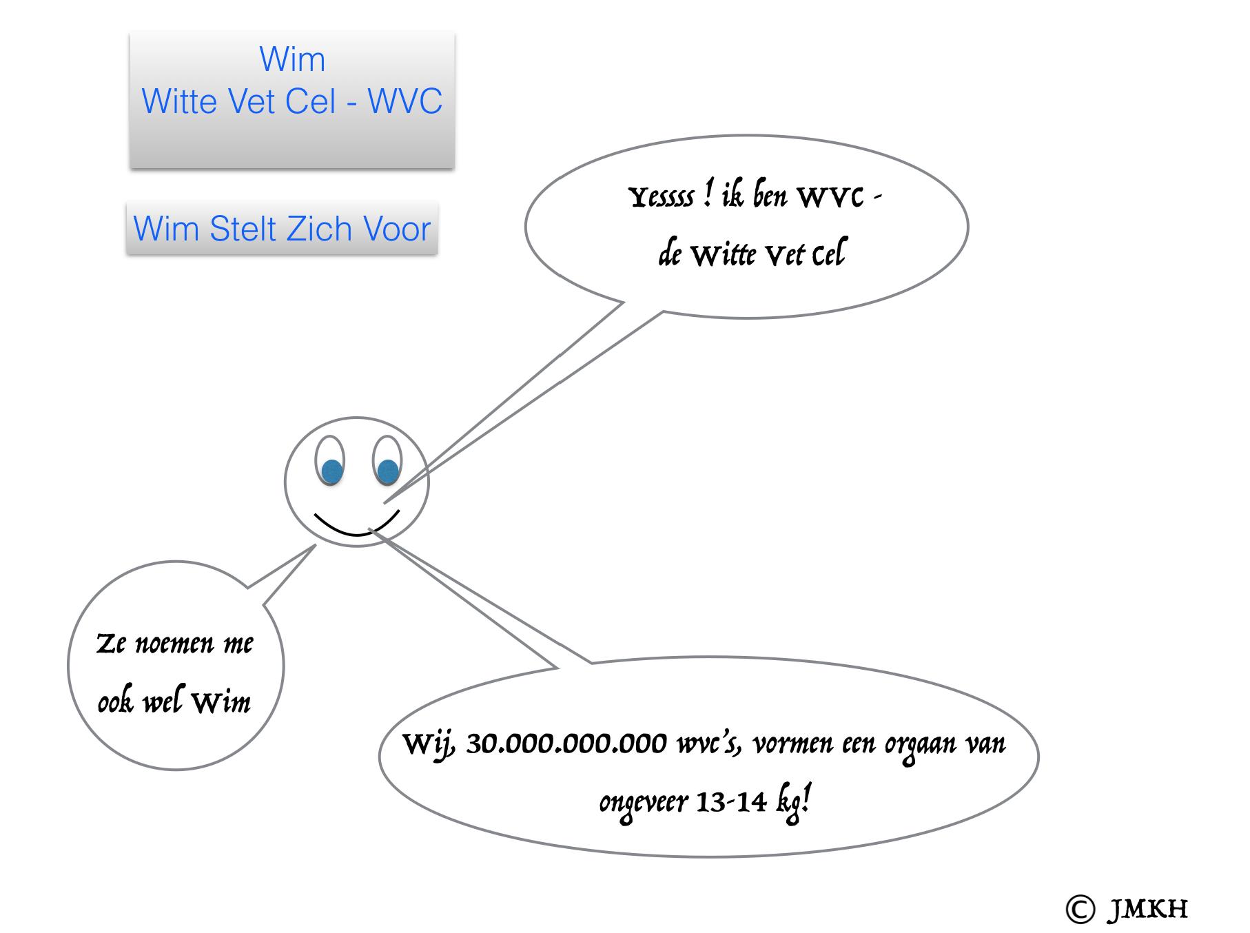 Wim - de Witte Vetcel