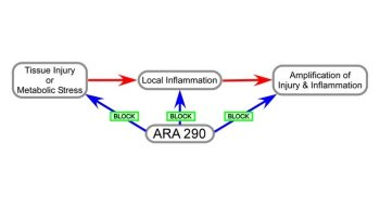 ara290b-INP