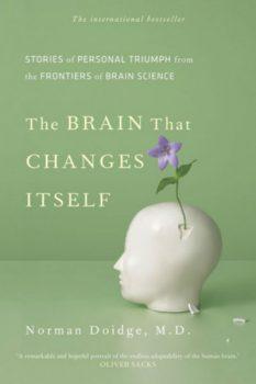 brain_changes-INP.jpg