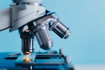 pixabay-2030266-INP Studie naar SB-509 zinkvinger ligand bij ALS