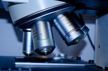 pixabay-275984-INP-Instituut-voor-Neuropathische-Pijn amyloidose