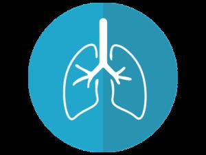 pixabay-2803208-INP-Instituut-voor-Neuropathische-Pijn diabetes cystische fibrosis cf