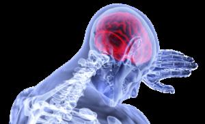 pixabay-3168269-INP-Instituut-voor-Neuropathische-Pijn