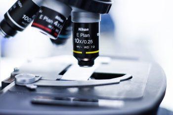 pixabay-3498582-INP.jpg Tapentadol en Olesoxime bij neuropathie