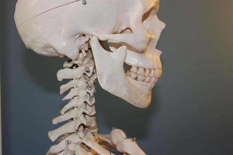 pixabay-778075-INP-Instituut-voor-Neuropathische-Pijn kaakpijn oorzaak